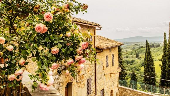 Rosen in San Gimignano, Torskana