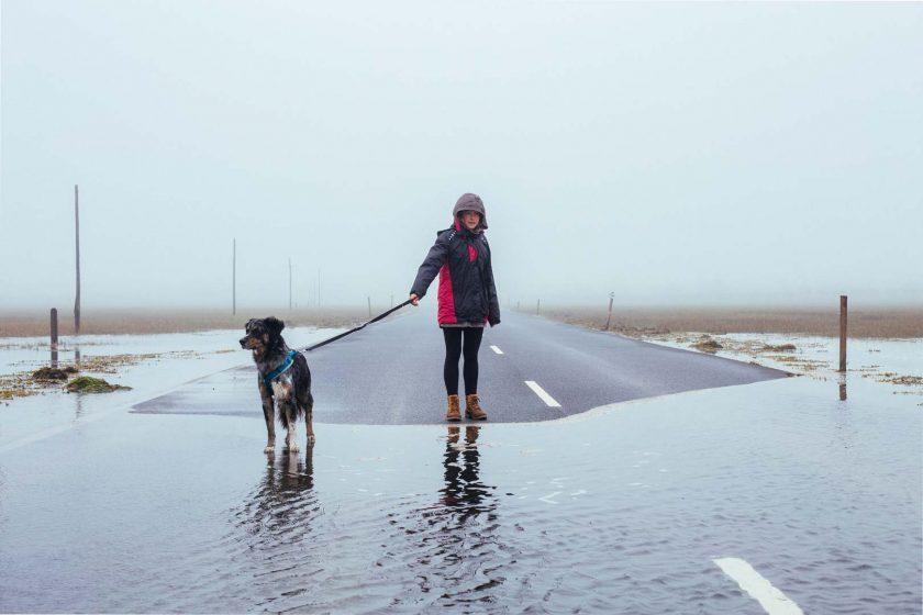 Die Straße auf Holy Island ist nur bei Ebbe passierbar. Dani und Kirby gucken in die Röhre.