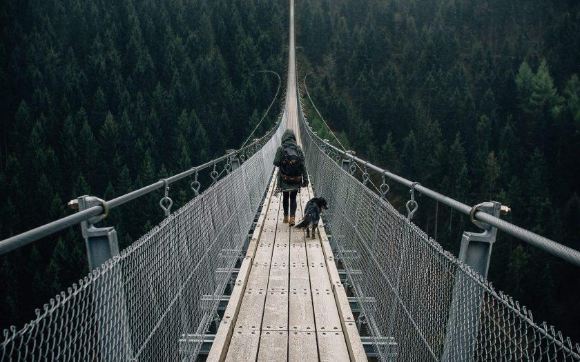 Geierlay Hängeseilbrücke im Hunsrück, Rheinland-Pfalz