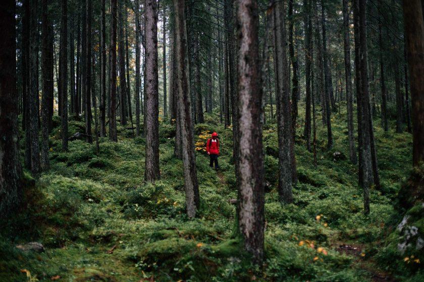 Dani stiefelt durch den bayrischen Wald am Eibsee.