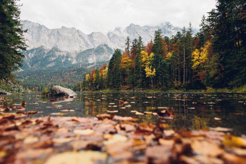 Der Eibsee im Herbst mit bunten Bäumen und jeder Menge Laub im See.