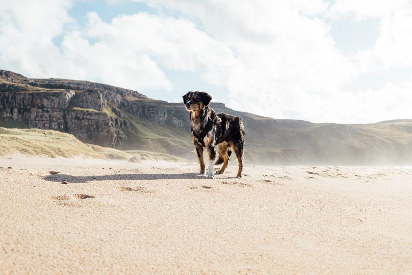 Sandwood Bay Beach Schottland